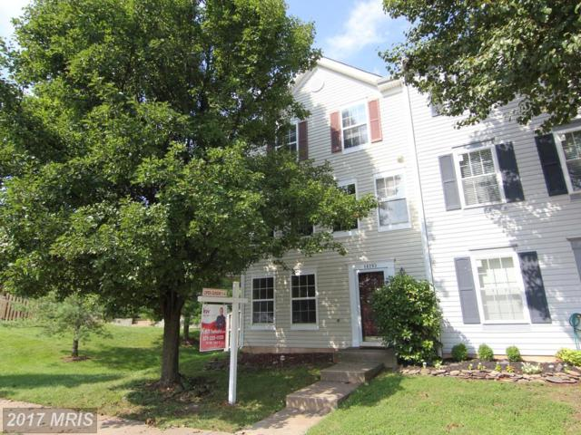 14283 Newbern Loop, Gainesville, VA 20155 (#PW10033957) :: AJ Team Realty