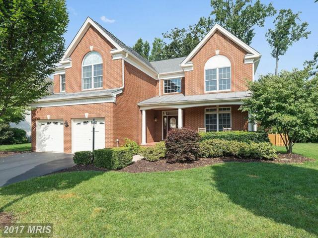 5830 Cranswick Court, Haymarket, VA 20169 (#PW10034691) :: Colgan Real Estate