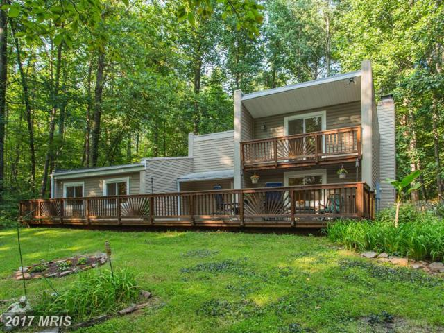 16402 Jackson Hollow Road, Haymarket, VA 20169 (#PW10035925) :: Jacobs & Co. Real Estate