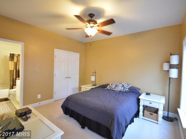 14877 Potomac Branch Drive, Woodbridge, VA 22191 (#PW10036344) :: Pearson Smith Realty
