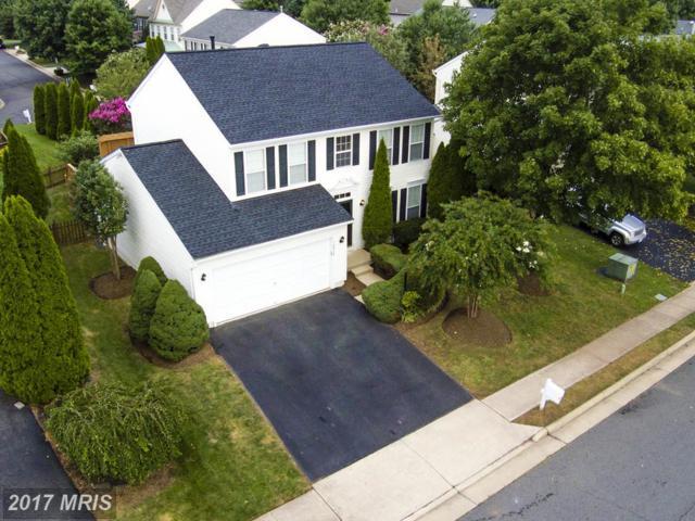 6916 Susquehanna Road, Gainesville, VA 20155 (#PW10045599) :: Pearson Smith Realty