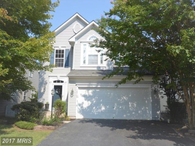 14760 Links Pond Circle, Gainesville, VA 20155 (#PW10050478) :: LoCoMusings