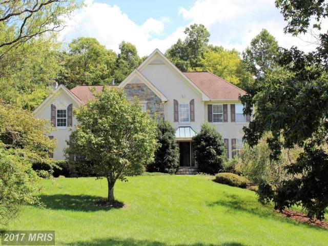 12071 Saranac Place, Manassas, VA 20112 (#PW10053335) :: Pearson Smith Realty