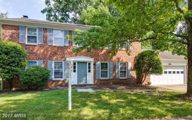 3817 Dalebrook Drive, Dumfries, VA 22025 (#PW10053645) :: Pearson Smith Realty