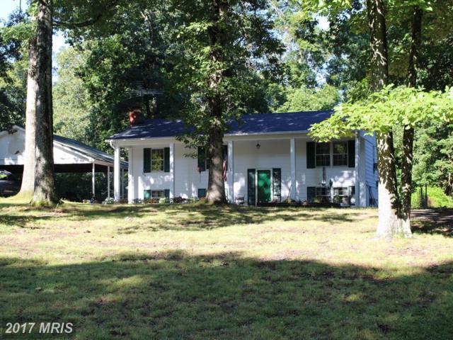 9512 Silas Drive, Nokesville, VA 20181 (#PW10054094) :: United Real Estate Premier