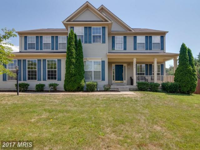 10250 Whistling Wind Court, Nokesville, VA 20181 (#PW10054208) :: Pearson Smith Realty