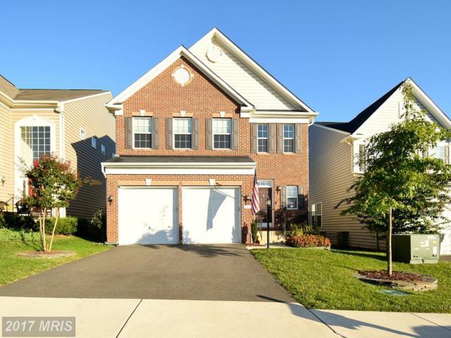 3610 Eagle Ridge Drive, Woodbridge, VA 22191 (#PW10055157) :: LoCoMusings