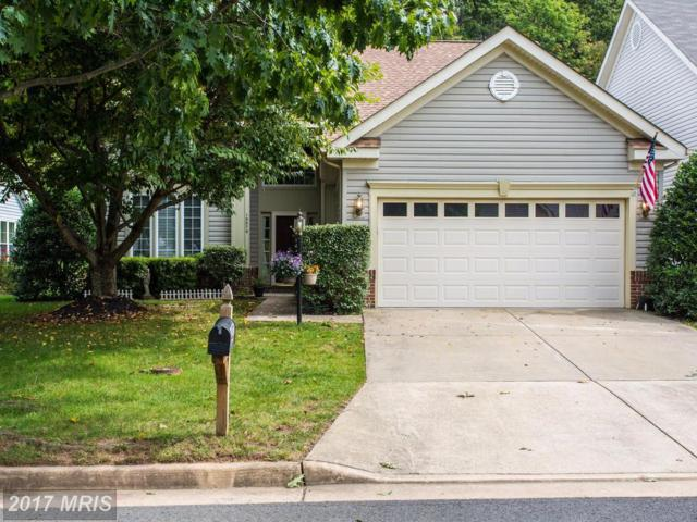 13579 Ryton Ridge Lane, Gainesville, VA 20155 (#PW10056041) :: LoCoMusings