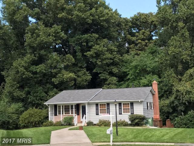 12588 Valleywood Drive, Woodbridge, VA 22192 (#PW10058959) :: Pearson Smith Realty