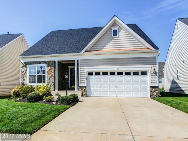6052 Piney Grove Way, Gainesville, VA 20155 (#PW10065145) :: Keller Williams Pat Hiban Real Estate Group