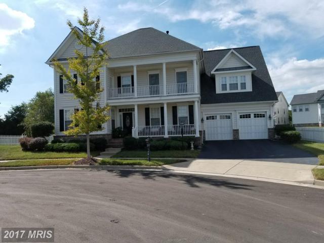 10938 A P Hill Court, Bristow, VA 20136 (#PW10066509) :: LoCoMusings