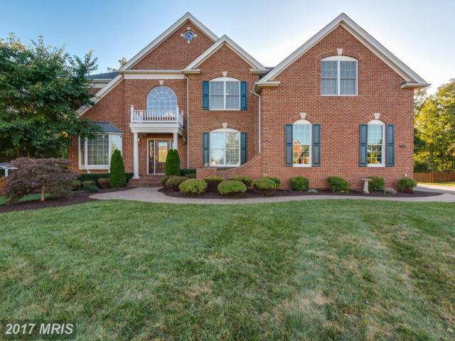 5216 Jacobs Creek Place, Haymarket, VA 20169 (#PW10070727) :: Colgan Real Estate