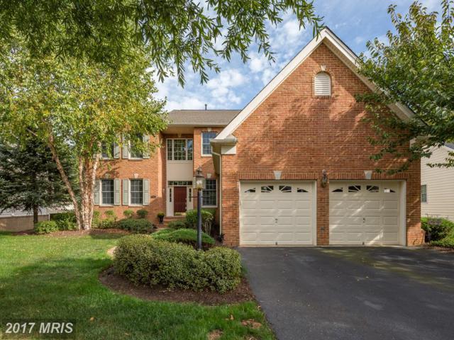 15264 Golf View Drive, Haymarket, VA 20169 (#PW10075486) :: Colgan Real Estate