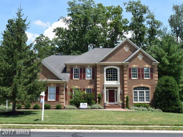 13237 Piedmont Vista Drive, Haymarket, VA 20169 (#PW10077130) :: Pearson Smith Realty
