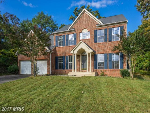 14947 Simmons Grove Drive, Haymarket, VA 20169 (#PW10080698) :: Jacobs & Co. Real Estate