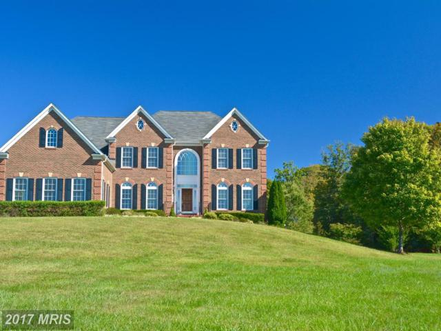 14945 Deepwood Lane, Nokesville, VA 20181 (#PW10081239) :: Pearson Smith Realty