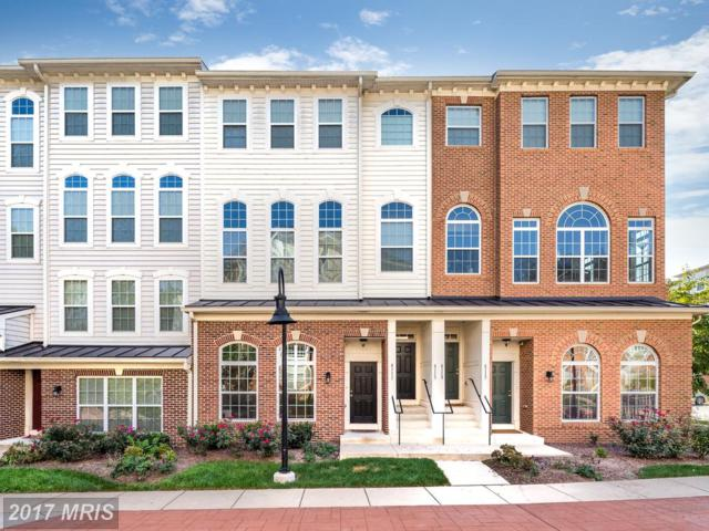 6111 Aster Haven Circle #145, Haymarket, VA 20169 (#PW10082498) :: Jacobs & Co. Real Estate