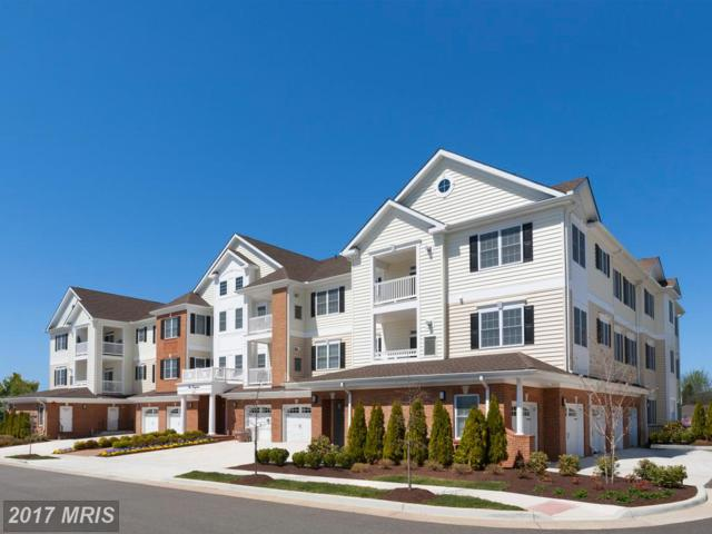15140 Heather Mill Lane #306, Haymarket, VA 20169 (#PW10083716) :: Jacobs & Co. Real Estate