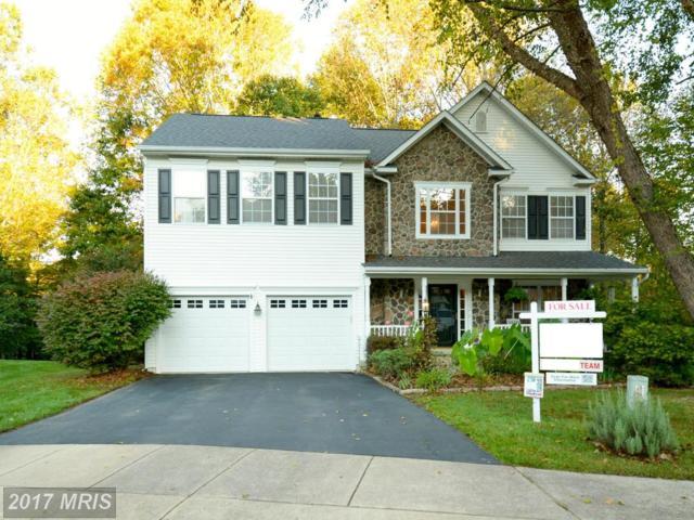 15522 Fancy Farm Court, Manassas, VA 20112 (#PW10085545) :: Colgan Real Estate