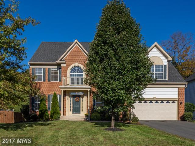 13198 Sapphire Ridge Place, Bristow, VA 20136 (#PW10086221) :: The Tom Conner Team