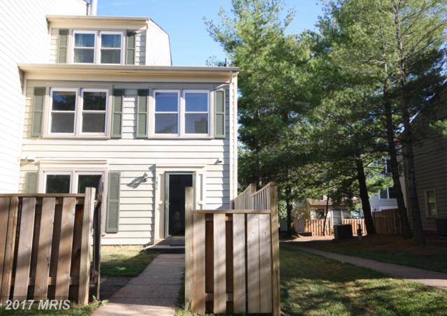 7624 Jordon Hollow Court, Manassas, VA 20109 (#PW10086228) :: Colgan Real Estate