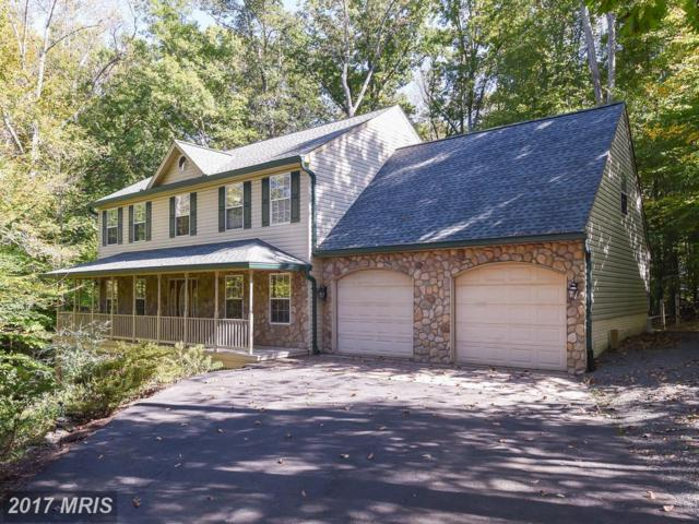 12009 Bridle Post Place, Manassas, VA 20112 (#PW10086825) :: Colgan Real Estate