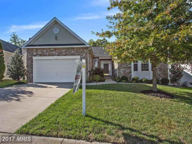 16853 Four Seasons Drive, Dumfries, VA 22025 (#PW10087406) :: Browning Homes Group