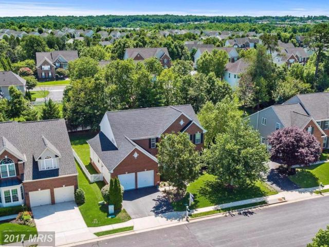 13681 Piedmont Vista Drive, Haymarket, VA 20169 (#PW10090209) :: Pearson Smith Realty