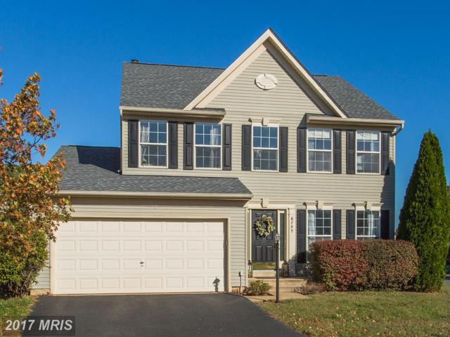 8745 Hackney Drive, Bristow, VA 20136 (#PW10090751) :: Pearson Smith Realty