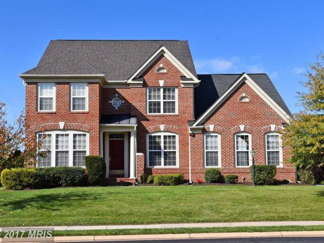 13732 Piedmont Vista Drive, Haymarket, VA 20169 (#PW10091079) :: Pearson Smith Realty