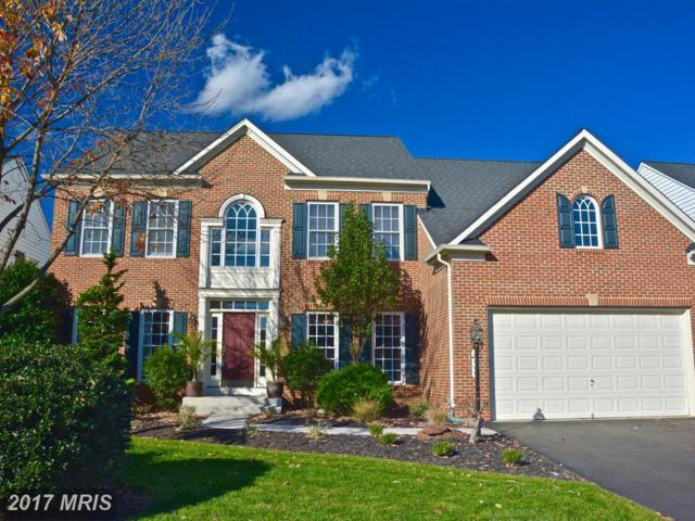 6704 Jackpin Place, Gainesville, VA 20155 (#PW10093931) :: Pearson Smith Realty