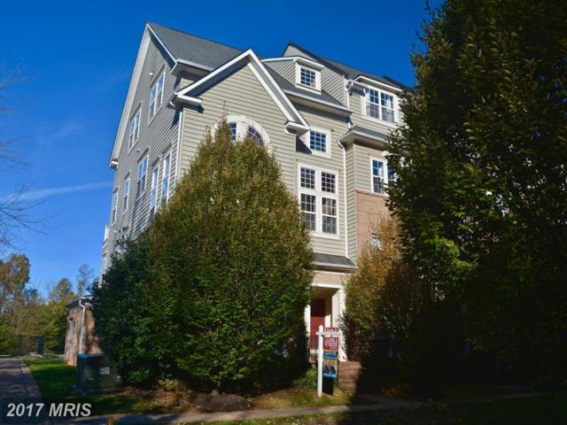7170 Little Thames Drive, Gainesville, VA 20155 (#PW10104068) :: The Hagarty Real Estate Team