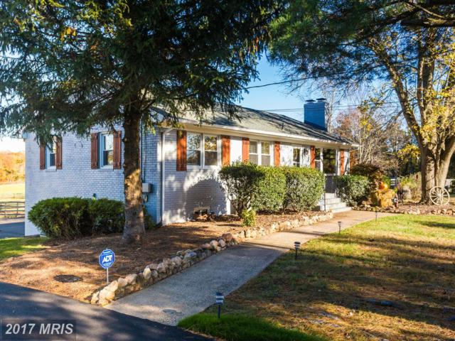 12625 Izaak Walton Drive, Bristow, VA 20136 (#PW10104623) :: The Putnam Group