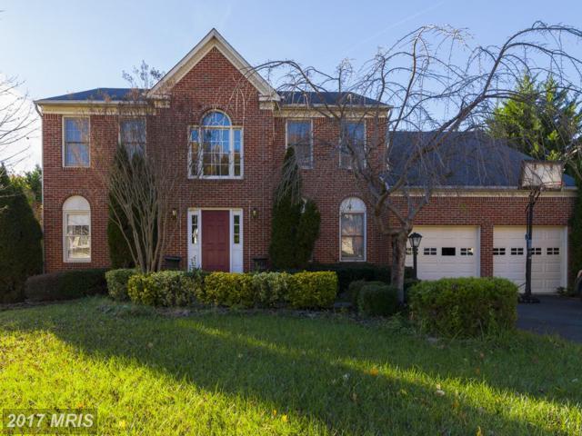 5095 Leatherback Road, Woodbridge, VA 22193 (#PW10106733) :: The Putnam Group