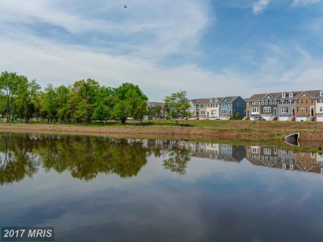8924 Englewood Farms Drive, Manassas, VA 20112 (#PW10108314) :: Pearson Smith Realty