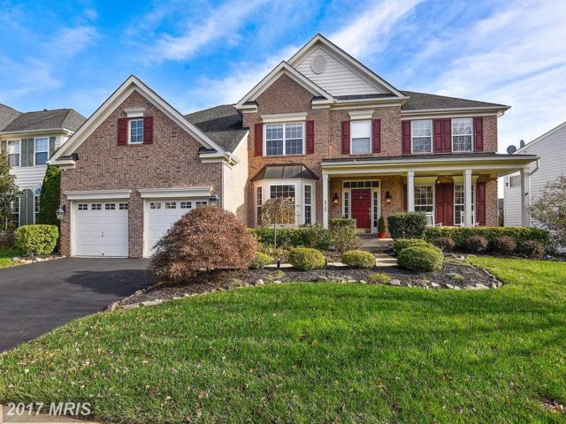 8715 Lords View Loop, Gainesville, VA 20155 (#PW10108791) :: Pearson Smith Realty