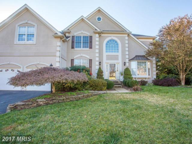 5594 Tournament Drive, Haymarket, VA 20169 (#PW10115315) :: Network Realty Group