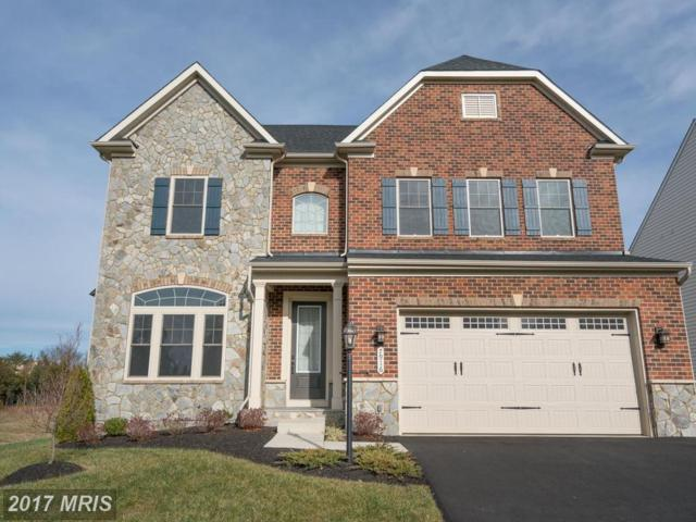 7916 Lukes Lodge Place, Gainesville, VA 20155 (#PW10117360) :: The Tom Conner Team