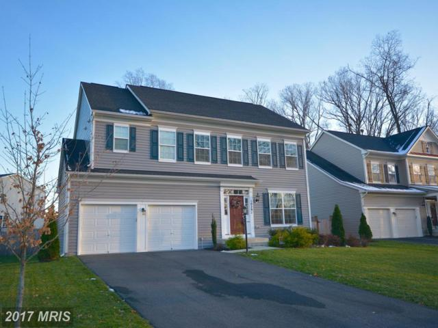 10291 Spring Iris Drive, Bristow, VA 20136 (#PW10118783) :: Network Realty Group