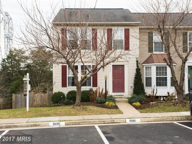 9081 Falcon Glen Court, Bristow, VA 20136 (#PW10118992) :: Network Realty Group