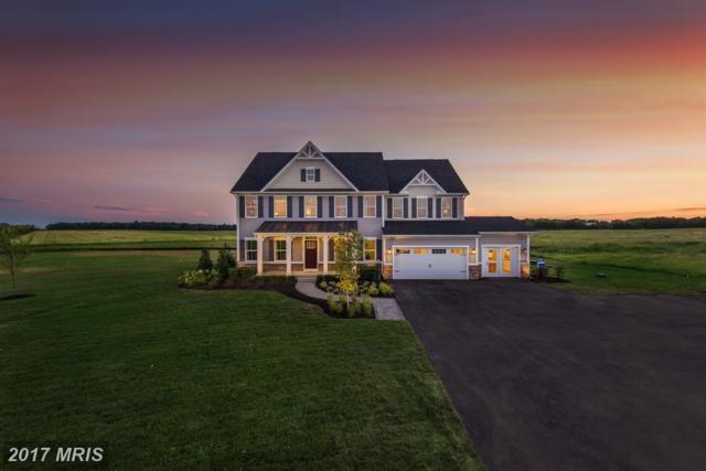 003 Edmund Saul Court, Nokesville, VA 20181 (#PW10119292) :: Jacobs & Co. Real Estate