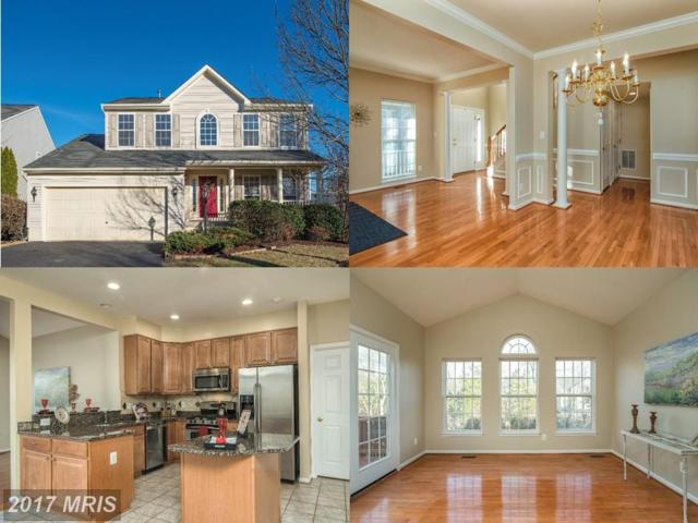 14116 Redstart Court, Gainesville, VA 20155 (#PW10120288) :: Pearson Smith Realty