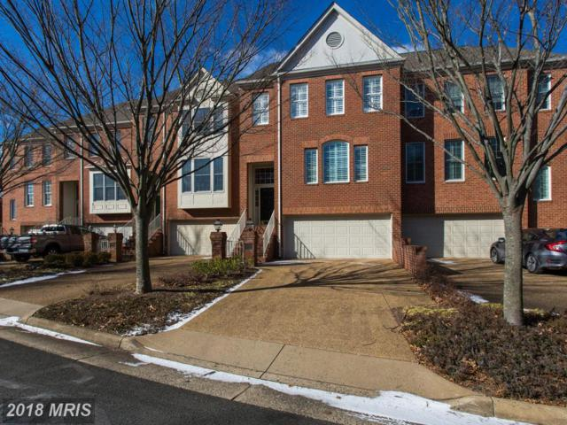 8026 Kamehameha Place, Gainesville, VA 20155 (#PW10130077) :: Pearson Smith Realty