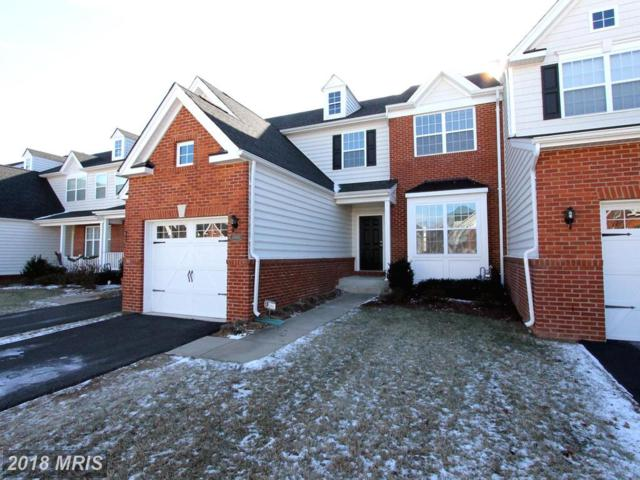 15451 Painters Cove Way, Haymarket, VA 20169 (#PW10130490) :: Colgan Real Estate