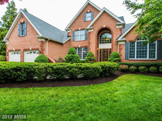 15073 Sycamore Hills Place, Haymarket, VA 20169 (#PW10131038) :: Pearson Smith Realty