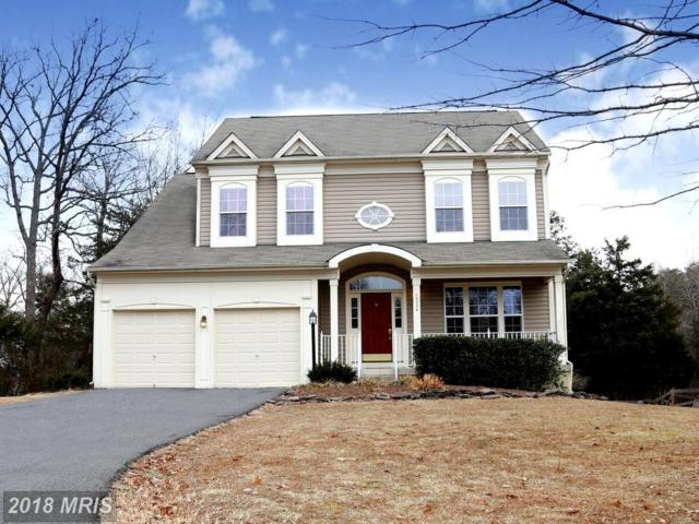 10024 Bonnykelly Court, Bristow, VA 20136 (#PW10133268) :: Pearson Smith Realty