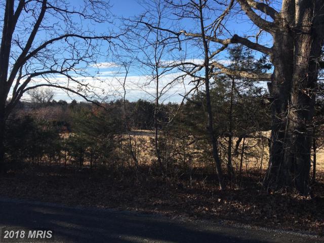 11402 Reid Lane, Nokesville, VA 20181 (#PW10135281) :: Colgan Real Estate