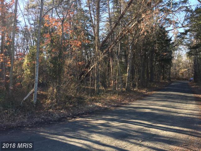 11250 Reid Lane, Nokesville, VA 20181 (#PW10135972) :: Dart Homes