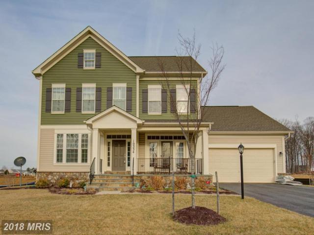 10334 Spring Iris Drive, Bristow, VA 20136 (#PW10136027) :: The Putnam Group