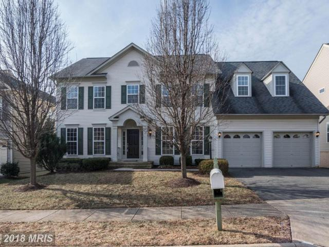 14321 Ladderbacked Drive, Gainesville, VA 20155 (#PW10137138) :: Pearson Smith Realty